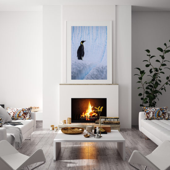 framed fine art print of emperor penguin on iceberg displayed in modern stylish luxury home