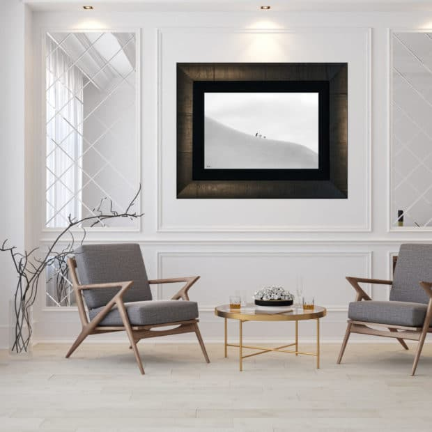 framed black and white photo of three penguins displayed in living room of modern luxury home