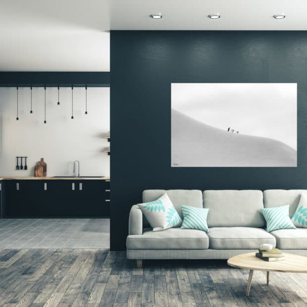 black and white photo of three penguins displayed in living room of modern luxury home