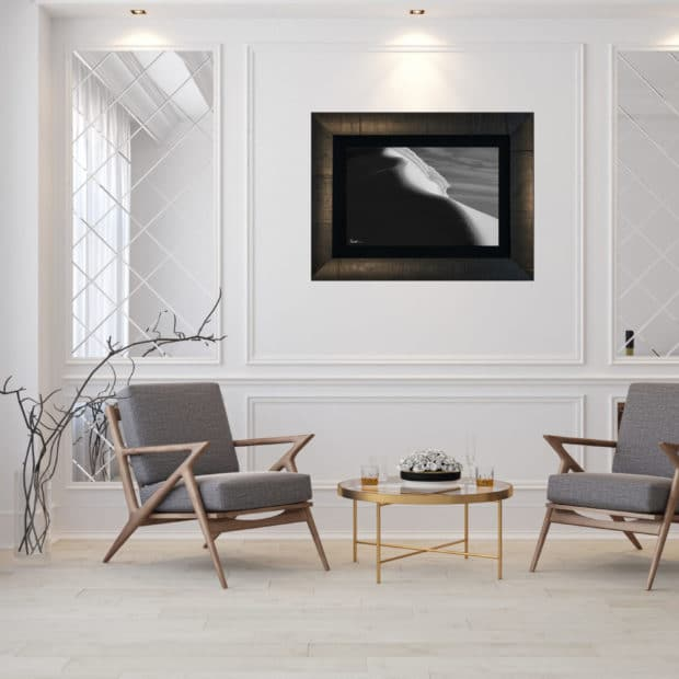 framed photo of large iceberg in Antarctica displayed in living room of modern luxury home