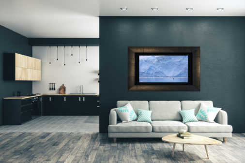 framed photo of bird flying in front of glacier displayed in living room of modern luxury home