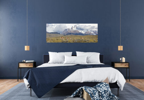 photo of wildlife crossing in front of mountains in Patagonia displayed in stylish bedroom