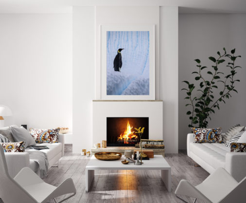 framed photo of emperor penguin displayed above fireplace in modern luxury home