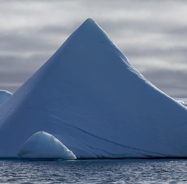 icebergs in an antarctic bay