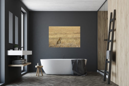 photo of leopard in Tanzania hanging above bathtub in bathroom of luxury home