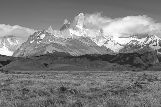 field in front of Fitz Roy range Patagonia