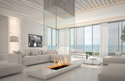 large photo of two elephants displayed in modern stylish luxury home