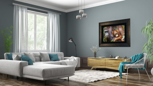 large framed fine art photo of baby orangutan holding its mother displayed in modern stylish luxury home