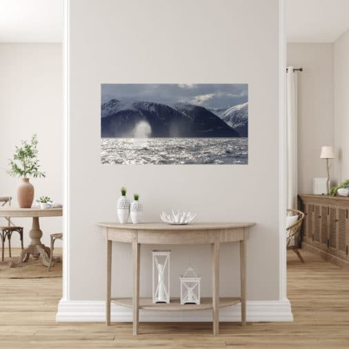 large fine art print of two humpback whales in Iceland displayed in modern stylish luxury home