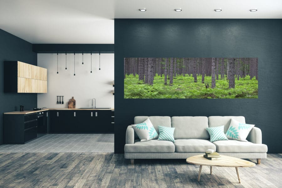 A beautiful panoramic photo of a forest providing a soothing environment inside the home to relieve stress
