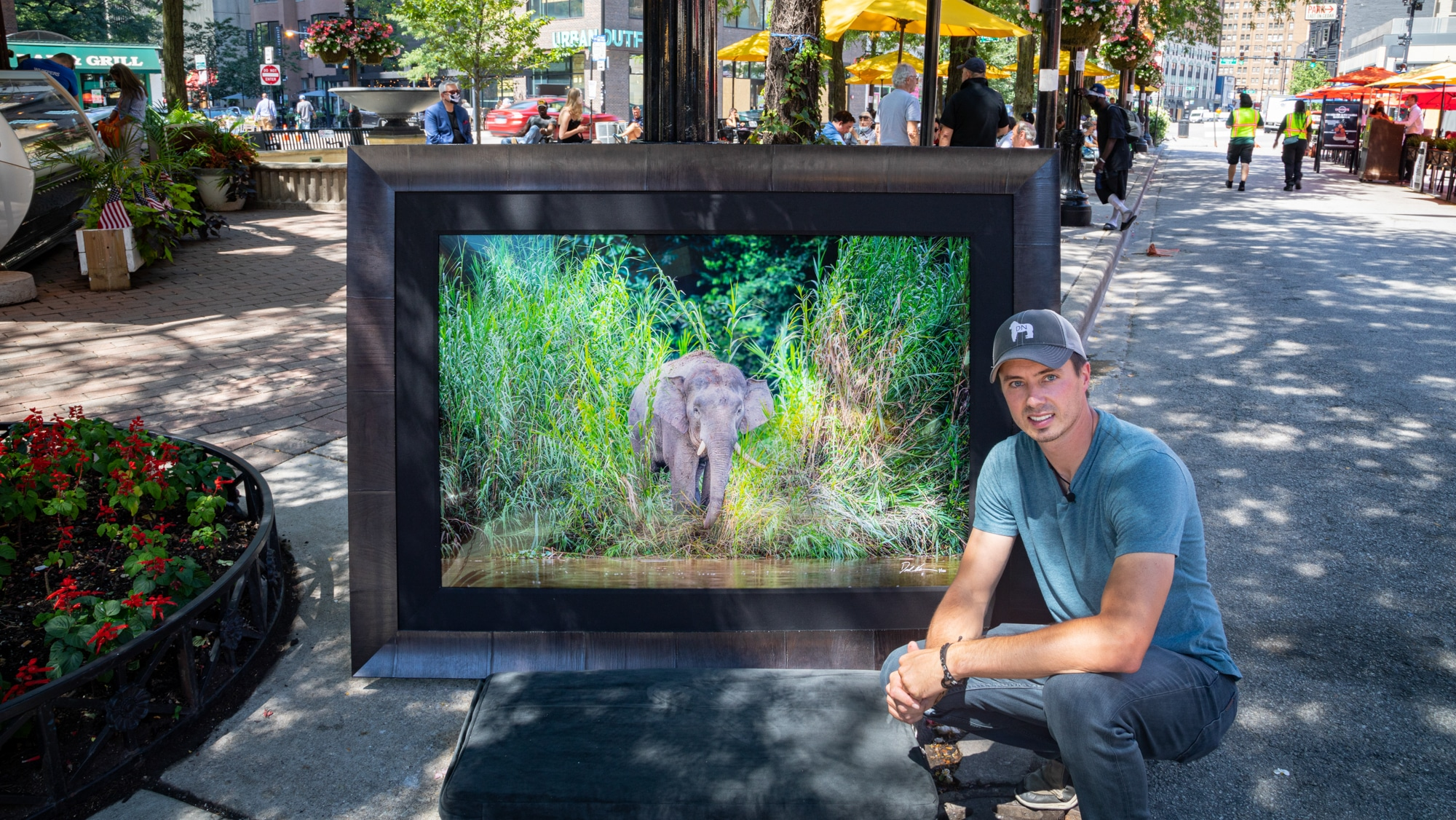 Photographer Derek Nielsen with large photograph of Bornean Elephant